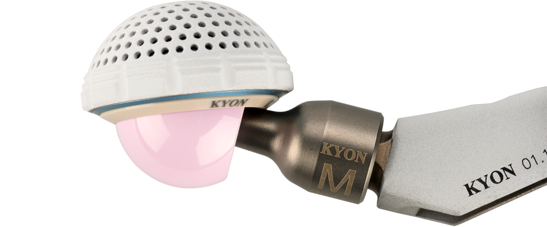 The latest generation of cementless hip prostheses for permanent use in dogs and cats from the Swiss company KYON. At the heart of the innovative technology is a friction partner made of Evonik's VESTAKEEP® PEEK biomaterial. (©KYON)